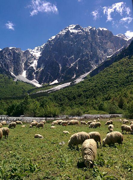 Parc national de la vallée de Valbona