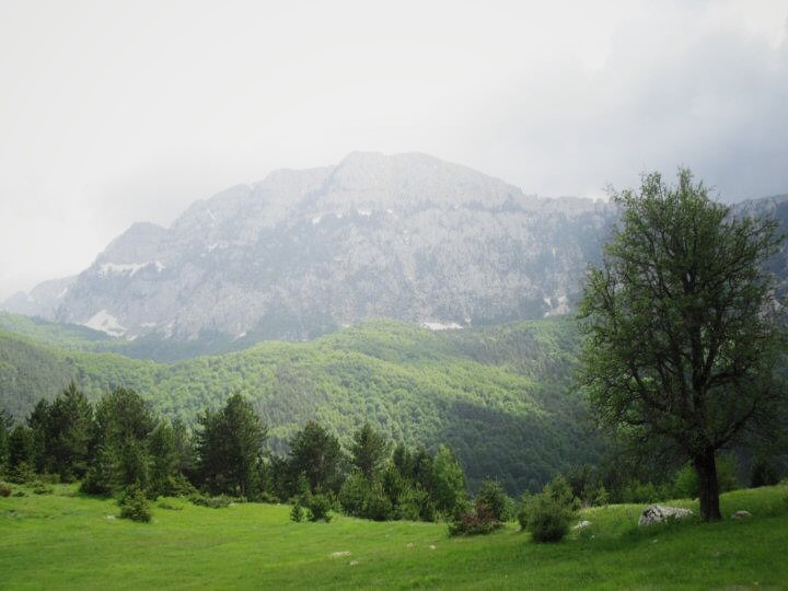 Parc national Zall-Gjoçaj