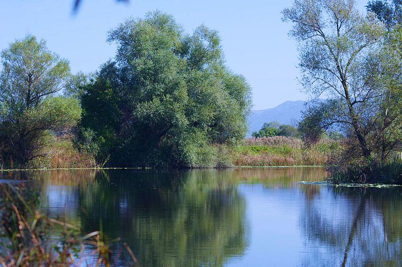 Parc naturel de Hutovo Blato
