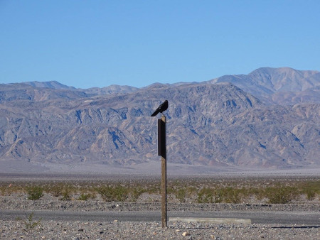 Death Valley - Parc National