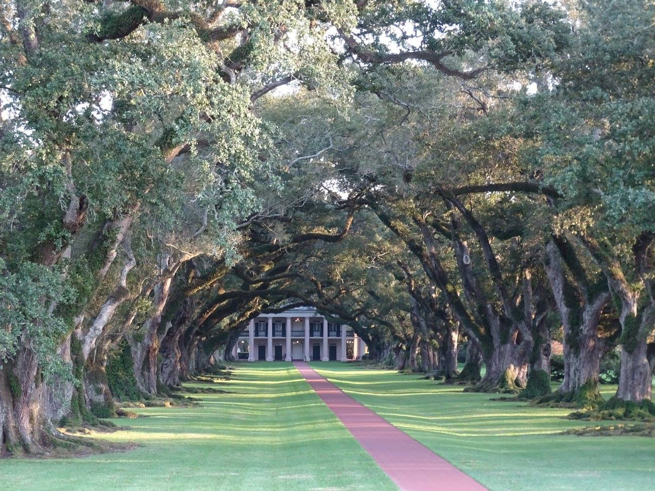 Vacherie - les plantations de Louisiane : Laura Plantation et Oak Alley