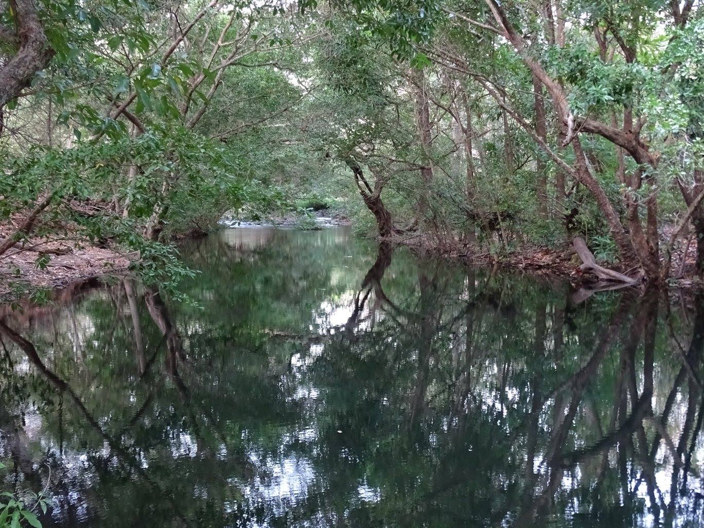 Lomas de Barbudal (réserve biologique)