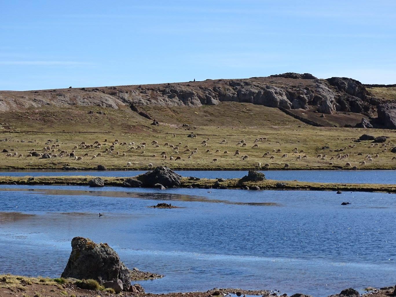 Laguna de Choclococha (Sta Ines)
