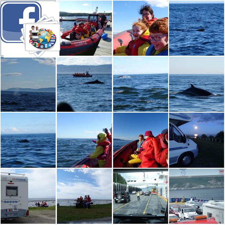 Canada - Baleines aux Bergeronnes